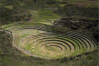 Inca agricultural research station, Moray, Peru, South America Stock Photo - Premium Rights-Managed, Artist: Robert Harding Images, Code: 841-07457316
