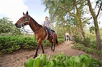 A couple rides horses on a wooded trail Stock Photo - Premium Royalty-Freenull, Code: 613-07492846