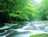 streams scenic nobody - Kumamoto Prefecture, Japan Stock Photo - Premium Rights-Managed, Artist: Aflo Relax, Code: 859-07495139