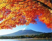 fall trees lake - Autumn leaves and Mount Fuji Stock Photo - Premium Rights-Managednull, Code: 859-07495596