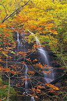 streams scenic nobody - Autumn leaves Stock Photo - Premium Royalty-Freenull, Code: 622-07519403