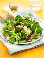 Corn lettuce,sea thong,avocado,radish and cucumber salad Stock Photo - Premium Rights-Managednull, Code: 825-07522167