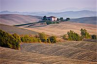 Typical Tuscan homestead and landscape near Montalcino, Val D'Orcia, Tuscany, Italy Stock Photo - Premium Rights-Managednull, Code: 841-07523665