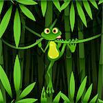 illustration curious frog on stem of the bamboo