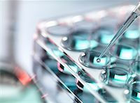 science & technology - Pipetting sample into multi well tray Stock Photo - Premium Royalty-Freenull, Code: 649-07560337