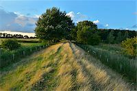 scenic view - Dike in Summer, Fluegger Watt, Baltic Island of Fehmarn, Schleswig-Holstein, Germany Stock Photo - Premium Royalty-Freenull, Code: 600-07564061