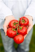 Midsection of woman holding tomatoes Stock Photo - Premium Royalty-Freenull, Code: 698-07588133