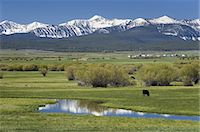 Bighole Valley Montana Stock Photo - Premium Royalty-Freenull, Code: 6106-07594808