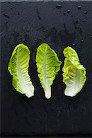 Three lettuce leaves Stock Photo - Premium Royalty-Freenull, Code: 659-07598752