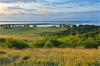 scenic view - View from Dornbusch in the Morning, Summer, Baltic Island of Hiddensee, Baltic Sea, Western Pomerania, Germany Stock Photo - Premium Royalty-Freenull, Code: 600-07599917