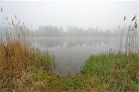 Lake in the Morning with Mist, Spring, Mondfeld, Mainfranken, Franconia, Baden Wurttemberg, Germany Stock Photo - Premium Royalty-Freenull, Code: 600-07599939