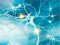 Active nerve cells, computer artwork. Stock Photo - Premium Royalty-Freenull, Code: 679-07604258