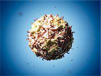 Theiler's murine encephalomyelitis virus, computer artwork. Stock Photo - Premium Royalty-Freenull, Code: 679-07604684
