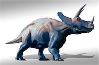prehistoric - Artwork of a herd of triceratops dinosaurs. These animals were common in the late Cretaceous period, from around 70 million years ago until the extinction of the dinosaurs some 65 million years ago. Triceratops was a herbivorous dinosaur that could reach a length of up to nine metres. It used its horns and its neck shield to defend itself against attack. Like modern plains animals, they may have l Stock Photo - Premium Royalty-Freenull, Code: 679-07608279
