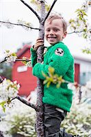 Side view portrait of happy boy climbing tree in lawn Stock Photo - Premium Royalty-Freenull, Code: 698-07635696