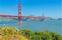 Golden Gate Bridge with flowers on hillside in foreground, San Francisco, California, United States of America, North America Stock Photo - Premium Royalty-Freenull, Code: 6119-07651944