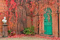 Ivy with red leaves grow on red brick wall in autumn in Racconigi park, Northern Italy. Stock Photo - Royalty-Freenull, Code: 400-07679264