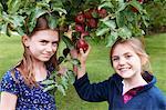 Smiling girls picking fruit from tree