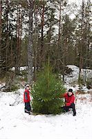snow christmas tree white - Father and son picking Christmas tree Stock Photo - Premium Royalty-Freenull, Code: 6122-07707393