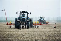 Combine harvester harvesting field Stock Photo - Premium Royalty-Freenull, Code: 653-07707833