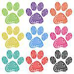 Illustration set of paw prints on a white background.