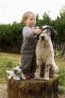Baby girl putting collar on a Portuguese Water Dog Stock Photo - Premium Royalty-Freenull, Code: 653-07761363