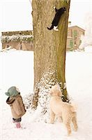 Cat climbing on tree, baby girl and Portuguese Water Dog watching Stock Photo - Premium Royalty-Freenull, Code: 653-07761368