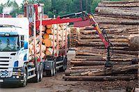 Truck near pile of lumber Stock Photo - Premium Royalty-Freenull, Code: 6102-07769064