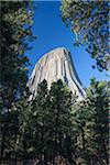 Devils Tower, Bear Lodge Mountains, Crook County, Wyoming, USA