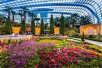Flower Dome, Gardens by the Bay, Singapore Stock Photo - Premium Rights-Managednull, Code: 700-07802663