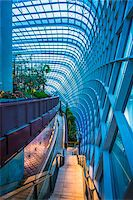 Architectural interior, Flower Dome, Gardens by the Bay, Singapore Stock Photo - Premium Rights-Managednull, Code: 700-07802664