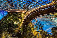 Cloud Forest conservatory, Gardens by the Bay, Singapore Stock Photo - Premium Rights-Managednull, Code: 700-07802667