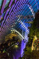 Cloud Forest conservatory, Gardens by the Bay, Singapore Stock Photo - Premium Rights-Managednull, Code: 700-07802668