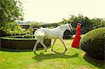 Woman in Red Equestrian Outfit Walking in Garden with Horse