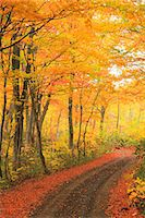 Autumn colors, Aomori Prefecture, Japan Stock Photo - Premium Royalty-Freenull, Code: 622-07841348