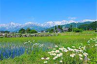 Nagano Prefecture, Japan Stock Photo - Premium Royalty-Freenull, Code: 622-07841447