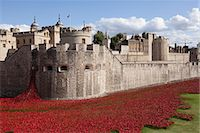 represented - UK, England, London. Blood Swept Lands and Seas of Red, a major art installation at the Tower of London, marking one hundred years since the first full day of Britain's involvement in the First World War. Stock Photo - Premium Rights-Managednull, Code: 862-07909704