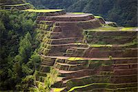 philippine terrace farming - Asia, South East Asia, Philippines, Cordilleras, Banaue; UNESCO World heritage listed Ifugao rice terraces Stock Photo - Premium Rights-Managednull, Code: 862-07910418