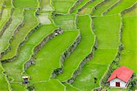 philippine terrace farming - Asia, South East Asia, Philippines, Cordilleras, Banaue; Batad, Zoe Logos church in the UNESCO World heritage listed Ifugao rice terraces of the Philippine cordilleras Stock Photo - Premium Rights-Managednull, Code: 862-07910421