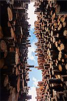 Low angle view of stacked timber in timber yard Stock Photo - Premium Royalty-Freenull, Code: 614-07911694