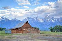 T. A. Moulton Homestead, barn, Mormon Row, Grand Teton National Park, United States of America, North America Stock Photo - Premium Rights-Managednull, Code: 841-07913904