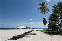 paradise (place of bliss) - Sun loungers on the beach on an island in the Northern Huvadhu Atoll, Maldives, Indian Ocean, Asia Stock Photo - Premium Royalty-Freenull, Code: 6119-07943898