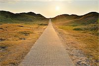 Dunes Path with Sun in Summer, Norderney, East Frisia Island, North Sea, Lower Saxony, Germany Stock Photo - Premium Royalty-Freenull, Code: 600-07945357