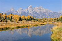 Schwabacher Landing with Teton mountain range in background, autumn, Jackson Hole, Grand Teton National Park, Wyoming, USA Stock Photo - Premium Royalty-Freenull, Code: 600-08026150