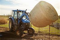 farm and boys - Boy farmer driving tractor moving hay stack on dairy farm Stock Photo - Premium Royalty-Freenull, Code: 614-08065936