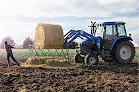 farm and boys - Boy farmer removing netting from hay stack in dairy farm field Stock Photo - Premium Royalty-Freenull, Code: 614-08065938