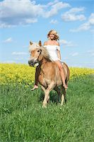 Young woman riding a haflinger horse in spring, Bavaria, Germany Stock Photo - Premium Rights-Managednull, Code: 700-08080589