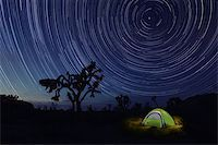 Tent Camping at Night in Joshua Tree Park Stock Photo - Royalty-Freenull, Code: 400-08095257