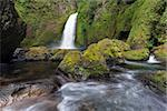 Wahclella Falls at Columbia River Gorge National Scenic Forest in Oregon