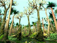 prehistoric - Carboniferous forest, computer illustration. The Carboniferous is a geologic period extending from about 350 to 300 million years ago. Stock Photo - Premium Royalty-Freenull, Code: 679-08121033